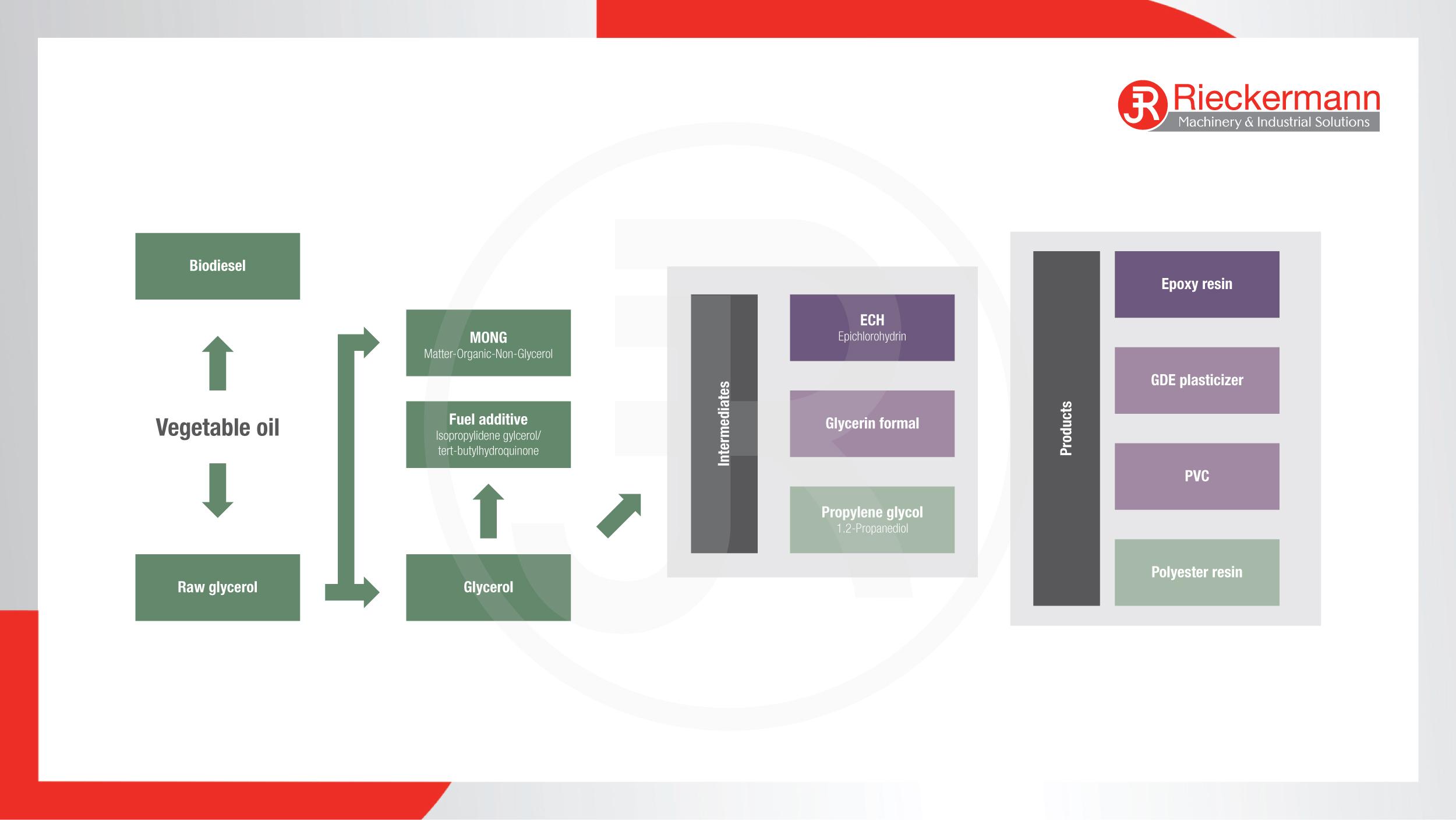 Oleochemistry Flow Scheme