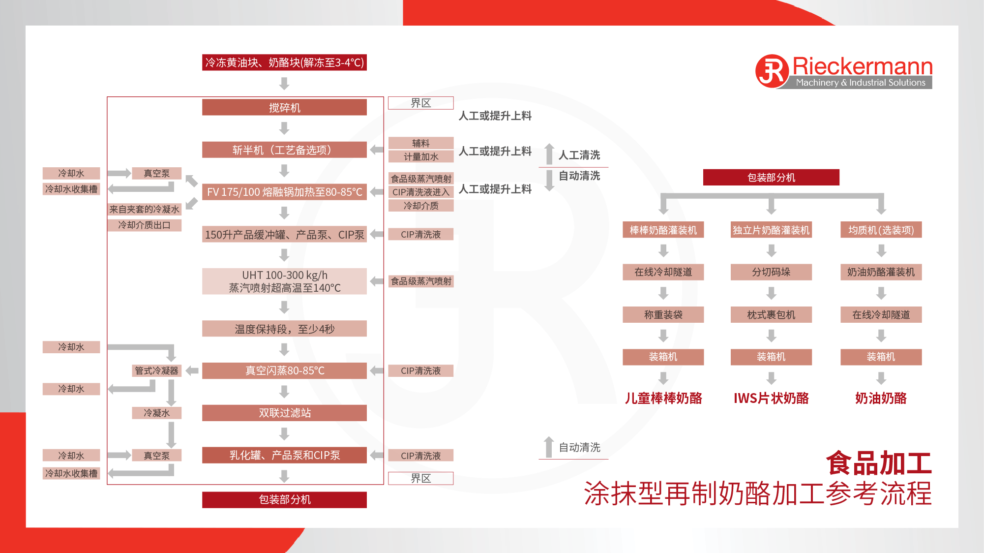 Food Cheese Processing Flowchart in Chinese