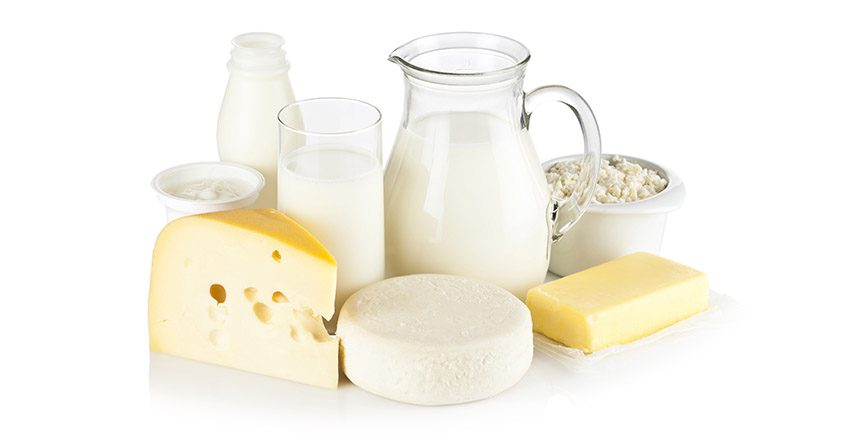 Dairy cheese butter web banner